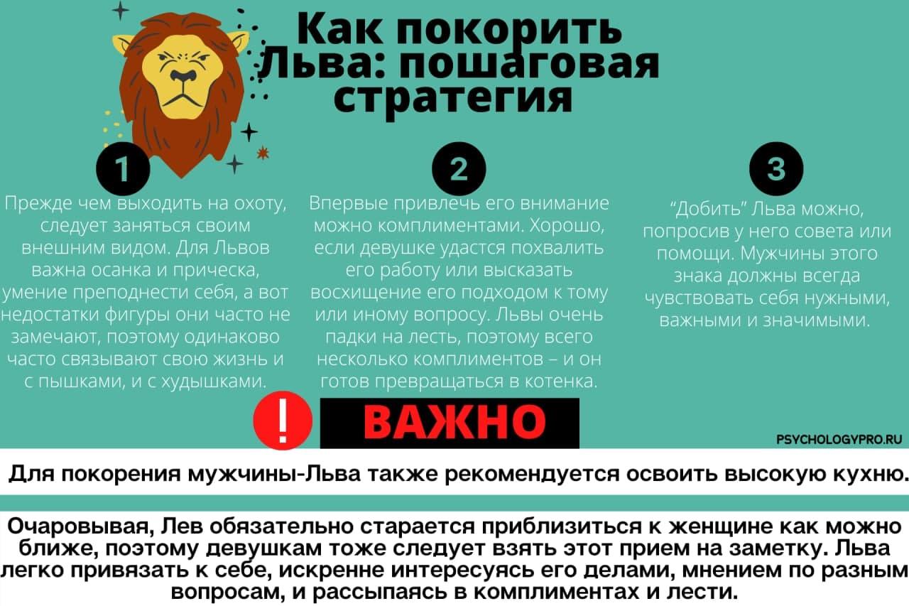 Инфографик Мужчина Лев
