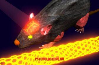 Исследования в психологии