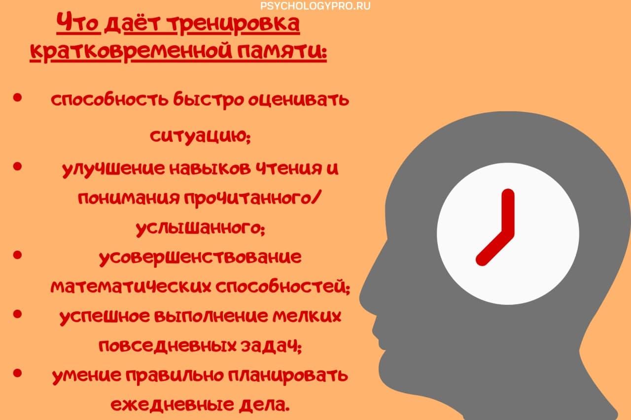 инфографик кратковременная память
