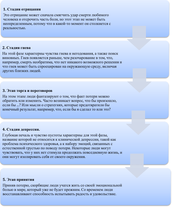 этапы принятия
