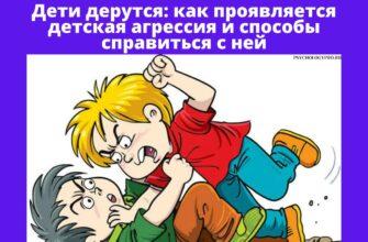 Причины детской агресси