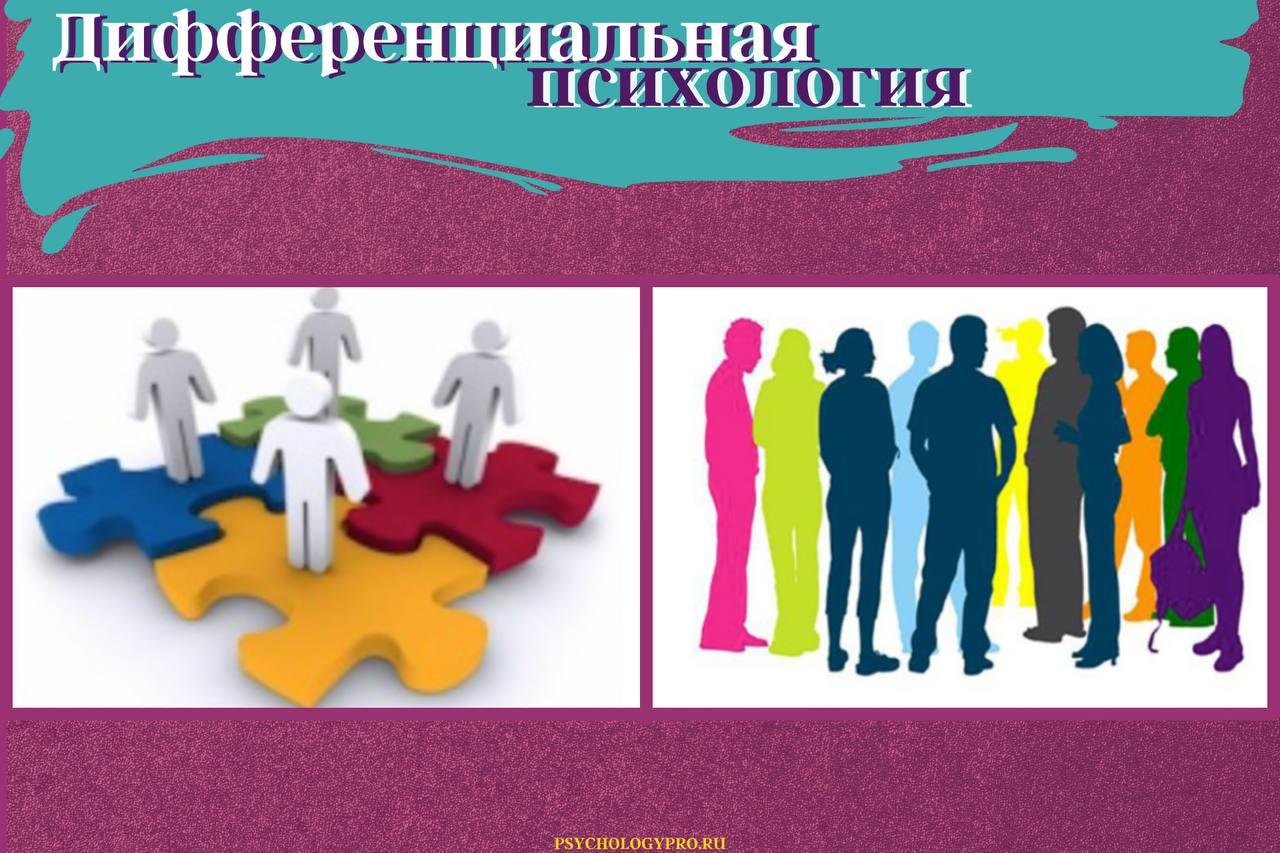 психология дифференциальных различий