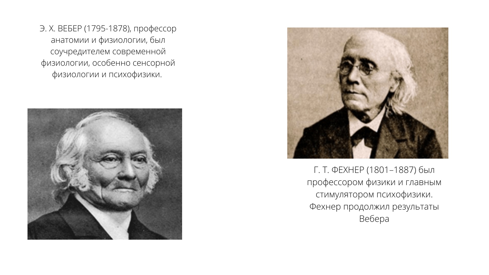 Закон Вебера-Фехнера